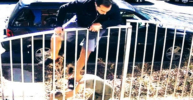 Biegacz zaatakowany przez psa